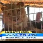 動物保護施設で従業員女性がライオンに襲われ死亡/Lion attacks and kills woman intern at Animal Sanctuary